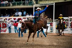 100 Reasons Look Forward to Calgary Stampede 2014 | Avenue Magazine #stampede #yyc #summer