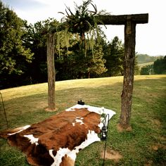 Cowhide rug at the altar!