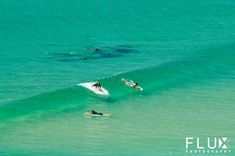 That guy paddling out is going to feel very lonely in just a moment. Surf Movies, Permanent Vacation, Waves Photography, Soul Surfer, Summer Surf, Sup Surf, Longboarding, Big Waves, Surfs Up