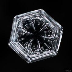 Snowflake-a-Day #55 by Don Komarechka - Photo 137499615 / 500px