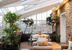 fruit trees indoors, lemon trees!  ideas for large leafed trees, deciduous, evergreen...jumping off points! http://www.lovemaegan.com/2013/05/perfectly-leafy-indoor-trees-varieties-styles-decor.html