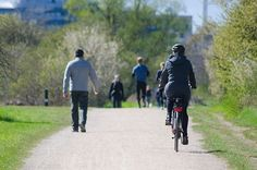 Dr. Michael Milnes of Rochester, MN: Cycling Benefits