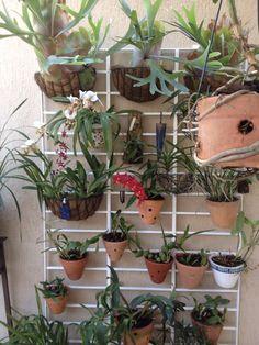 Jardineira vertical