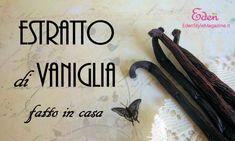 Estratto di vaniglia fatto in casa - ricetta con vodka. Per cucinare e per i cosmetici fai da te.