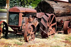 An old Fordson Tractor pulling a huge log on a tractor trailer. From the 19th century. Shallow depth of field.