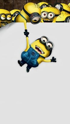 Minions Wallpaper For Android Wallpapers) – Desktop Wallpaper Cute Minions Wallpaper, Minion Wallpaper Iphone, Computer Wallpaper, Yellow Guy, Minions Despicable Me, Funny Minion, Minions 2014, Minion Face, Funny Jokes