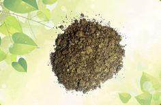 Karanja powder for fungal dermatosis