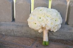 This classic bridal bouquet consisted of fluffy white flowers including hydrangea, ranunculus and roses wrapped in a champagne satin ribbon. | Bob Gail Events Different Types Of Flowers, Timeless Wedding, Groom And Groomsmen, Boutonnieres, Ranunculus, Hydrangea, White Flowers, Event Planning, Wedding Colors