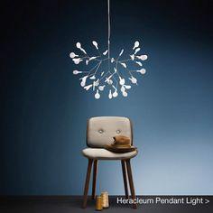 Heracleum Pendant Light by Moooi
