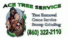 Ace Tree Service provides tree removal and other tree services in Rocky Hill, CT. We specialize in large and hazardous tree removals, but also do smaller tree removals, tree trimming, stump grinding and other tree services in Rocky Hill, CT