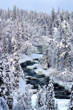 Aallokkokoski rapids, length 800 m along Kitka river in Kuusamo, Finnish Lapland