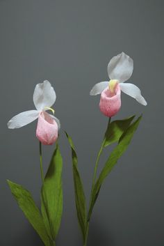 Crepe paper flower, lady slipper orchid. Handcrafted by Papetal.