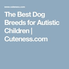 d0cd1f25321 The best dog breeds for autistic children tend to be Labrador retrievers