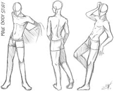 Male body study - Take two by SoraCooper on deviantART