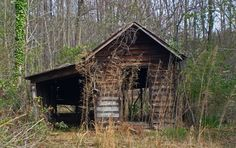 shed in the woods - Google Search