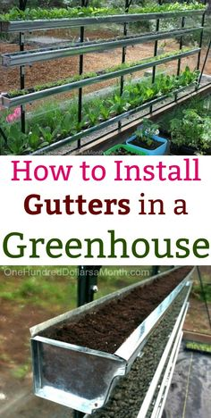 Hydroponic gardening 301670875038795670 - Greenhouse, How to Install Gutters in a Green House, Greenhouse Gardening, Greenhouse Gardens, Greenhouse Vegetables Source by hayleyrenea Diy Greenhouse Plans, Greenhouse Farming, Best Greenhouse, Backyard Greenhouse, Hydroponic Gardening, Container Gardening, Organic Gardening, Vegetable Gardening, Greenhouse Wedding