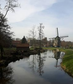 Molen - Voorburg (foto by Betty Bouwer)