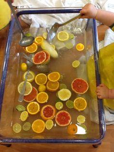Citrus Soup!