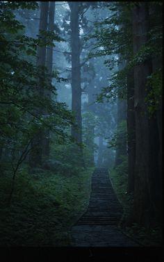 """""""Haguro-san pathway"""" by curious_bird on Flickr - a dark green pathway"""