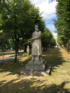Campus Altes AKH, Denkmal Theodor Billroth Garden Sculpture, Outdoor Decor, Home Decor, Homemade Home Decor, Decoration Home, Interior Decorating