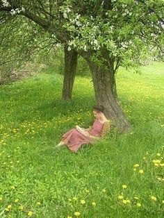 peace and quiet reading a book under a flowery tree