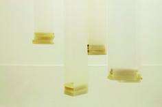 Elena Modorati, Giardino Pensile, poliestere, cera, carta giapponese, dimensioni variabili, 2007-2015
