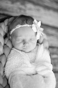 Photo from Lilley Harper Newborn Session collection by Halleigh Hill Photography
