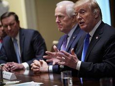 Trump Wants Joe Manchin's Gun Control, Rejects Steve Scalise's National Reciprocity Push