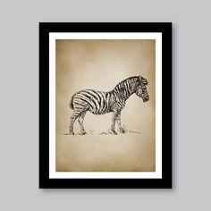 Vintage Zebra Safari Single Print - Home. Decor. Nursery. Boy. - You Pick the Size (S-207)