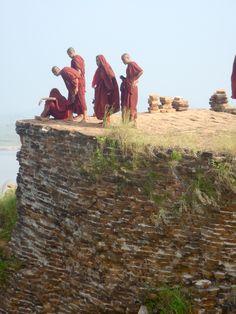 Moines birmans (photo de Renée Letiers)