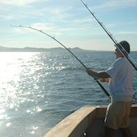 Travel cabo san lucas on pinterest for Cabo fishing seasons