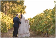 Bride and Groom in the Vineyard at Sandalford Winery Rain And Thunderstorms, Family Photographer, Bride Groom, Swan, Fall Wedding, Vineyard, Reception, Wedding Photography, Weddings