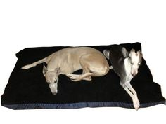 KosiPet Cheap Budget Black Sherpa Fleece Medium Spare Cover For Dog Bed,Pet Bed -- For more information, visit now
