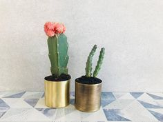 MILLIE a mini planters for succulents pots small gold copper minimal home decor Small Succulents, Succulent Pots, Planter Pots, Doll House Crafts, Mini Doll House, Minimal Home, Metal Finishes, Minimalism, Cactus