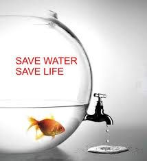 Save water save life essay