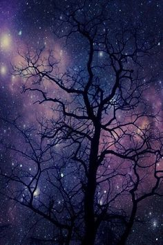 Arbol galaxia wallpaper hipster