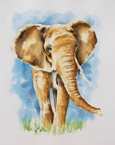 Is the elephant your spirit animal? Bring an uplifting and inspiring animal artwork into your favorite space. Framed and unframed prints in different sizes, posters and much more over at my Redbubble shop! This is a print created from my original watercolor painting.  #watercolorelephantprint #watercolorartprints #watercoloranimalpaintings #colorfulanimalpaintingsdecor #animalpaintingselephant #originalartprints