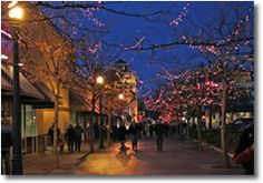 Christmas in the City. Promote local progress using boisethinks.org!
