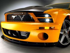 Mustang ~ Reminds me of Bumble bee. Saw someone in WI have an actual car designed like bumble bee last year. :)