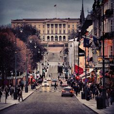 Karl Johans Gate (the main street in Oslo, leads from Oslo S, the train-station,  to the Royal Palace)