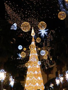 Luminarie di Natale a Salerno 2011