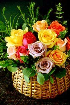 Beautiful Rose Flowers, Beautiful Flower Arrangements, Amazing Flowers, Yellow Flowers, Beautiful Flowers, Butterfly Flowers, Flowers Nature, Corporate Flowers, Church Flowers