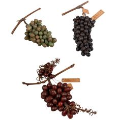 Ten Wax Grape Clusters by Francesco Garnier-Valletti, Turin, Italy 1