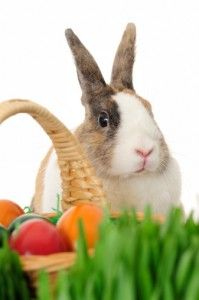 How to make your Easter baskets eco-friendly from HealthyVoyager.com