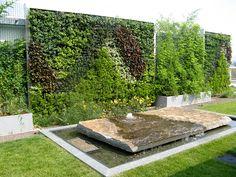 green walls | Community Health Center Roof Garden Green Walls
