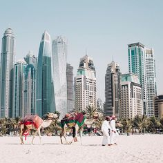 Traveling to Dubai can be cut short if you don't know the right things to do. Can you drink alcohol? Should you tip waiters? How should you dress? Here are the things to know if you are traveling to Dubai for the first time. Dubai City, Dubai Uae, Visit Dubai, Work Abroad, Companies In Dubai, Christmas Vacation, Yoga Retreat, United Arab Emirates, Greece Travel