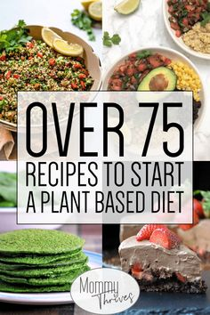 75 + Plant Based Whole Food Recipes – Mommy Thrives Plant Based Whole Food Diet and Vegan Diet – Plant Based Whole Food Vegan Recipes – Healthy Recipes For Every Meal – Over 75 Recipes To Start A Plant Based Diets Plant Based Diet Meals, Plant Based Meal Planning, Plant Based Whole Foods, Plant Based Eating, Plant Based Recipes, Plant Based Vegan Diet, Plant Diet, Healthy Recipes, Raw Food Recipes