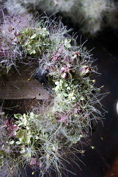 新作アップのお知らせ。 : シベリアケヱキのこんな一日 Pressing Flowers, Drying Flowers, Dried Flower Wreaths, Green And Purple, Crowns, Garland, Christmas Crafts, Halloween, Plants
