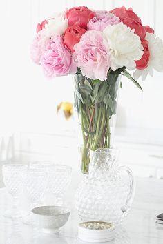 | Home Favourites | http://monikahibbs.com