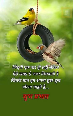 Good Morning Love Gif, Good Morning Friends Quotes, Hindi Good Morning Quotes, Love Quotes For Him Romantic, Good Thoughts Quotes, Morning Images, Spiritual Quotes, Quotations, Urdu Quotes